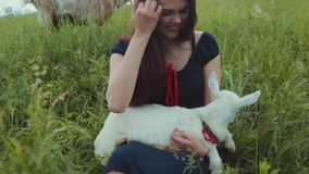 Beautiful brunette girl in a dress sitting in high green grass and holding the white goat kid, feeds it with grass and. Strokes it. Nature lover, enjoying life stock footage