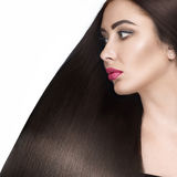 Beautiful brunette girl with a perfectly smooth hair and classic make-up. Beauty face. Royalty Free Stock Image