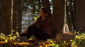 Beautiful brunette girl with picnic basket sitting under the tree in autumn forest. Warm sunny day. 4K steadicam video. Beautiful brunette girl with picnic stock video footage