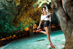 Beautiful brunette girl pin-up shot at night Royalty Free Stock Photo