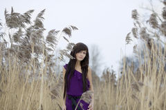 Beautiful brunette girl in the reed Stock Images