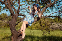 Beautiful brunette girl sitting on a tree. Beautiful brunette girl in a blue dress sitting on a tree Royalty Free Stock Image