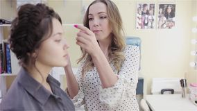 Beautiful brunette girl uses the services of a professional makeup artist. stock footage