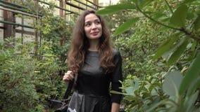 Beautiful brunette girl walking through tropical plants in big greenhouse. 4K shot. Beautiful brunette girl walking through tropical plants in big greenhouse. 4K stock footage
