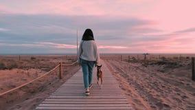 Beautiful brunette girl walks ahead of sea beach at dawn stock video footage