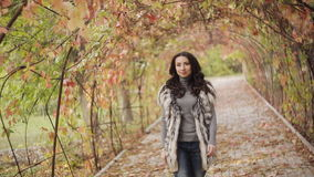 Beautiful brunette girl walks in autumn park stock footage