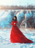 Beautiful brunette girl. Girl walks in the winter mountains. She dressed beautiful, lush, red dress. Wind waves her clothes. The cold and the snow, creating a royalty free stock image