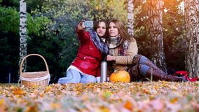 Beautiful brunette girls making selfie on a picnic in autumn park sitting the fallen leaves near the pumpkin at stock video footage