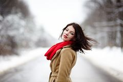 Beautiful brunette with hair blown by wind in the winter. Portrait of a beautiful brunette with hair blown by wind in the winter stock photos