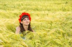 Beautiful brunette lady in wheat field. Royalty Free Stock Image