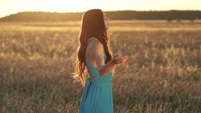 Beautiful brunette lady in wheat field at sunset stock video footage