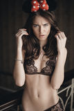 Beautiful brunette model in expensive lace lingerie Royalty Free Stock Photos