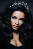 Beautiful brunette model. Royalty Free Stock Photo