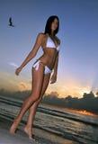 Beautiful brunette model posing on the ocean coast at sunrise Stock Photos