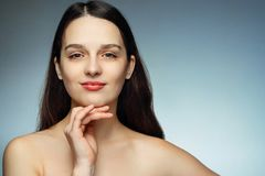 Gorgeous brunette with perfect skin and hair looking at the view. Beautiful brunette with perfect skin, light make-up Royalty Free Stock Images