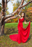 A beautiful brunette in red dress Royalty Free Stock Photo