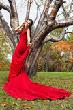 A beautiful brunette in red dress Royalty Free Stock Photography