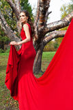 A beautiful brunette in red dress Royalty Free Stock Photos