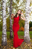 A beautiful brunette in red dress Stock Image