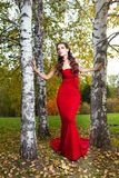 A beautiful brunette in red dress Stock Photography