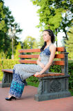 Beautiful brunette sits on bench Stock Photography