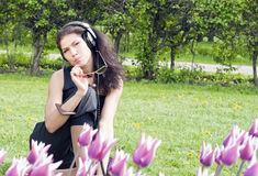 Beautiful brunette sits on the grass Royalty Free Stock Photography