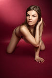 Beautiful brunette in the studio Stock Photography