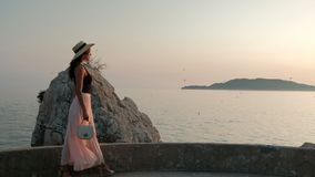 Beautiful brunette walks on seaside promenade in background birds. stock video footage