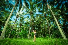 Beautiful brunette wint perfect body ner a big palmas in the Bali. Indonesia.  Stock Images