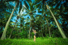 Beautiful brunette wint perfect body ner a big palmas in the Bali. Indonesia.  Royalty Free Stock Photography