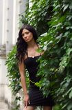 Beautiful brunette woman in a black dress Stock Photography