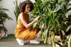 Free Beautiful Brunette Woman Botanist Royalty Free Stock Photos - 163201328