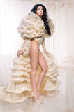 Beautiful brunette woman in a fluffy ivory bolero Stock Photography
