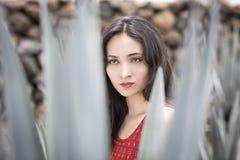 Beautiful brunette woman with Latino Stock Photography