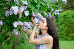 Beautiful brunette woman with long hair smelling the lilacs Stock Photo