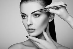 Beautiful brunette woman paints the eyebrows Stock Photography