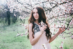 Beautiful brunette woman in the park standing near the blossom tree Stock Images