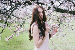 Beautiful brunette woman in the park standing near the blossom tree Stock Image