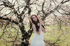 Beautiful brunette woman in the park standing near the blossom tree Royalty Free Stock Photography