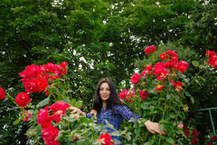 Beautiful brunette woman posing in a red rose garden Stock Photo