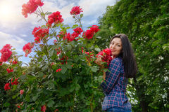 Beautiful brunette woman posing in a red rose garden Stock Images