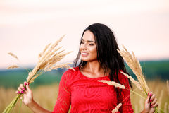 Beautiful brunette woman with a red dress in a field Stock Image