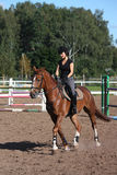 Beautiful brunette woman riding (trotting) chestnut horse Royalty Free Stock Photos