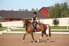 Beautiful brunette woman riding (trotting) chestnut horse. In summer Royalty Free Stock Photography