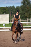 Beautiful brunette woman riding (trotting) chestnut horse Royalty Free Stock Photography
