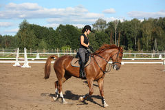 Beautiful brunette woman riding (trotting) chestnut horse Stock Photography
