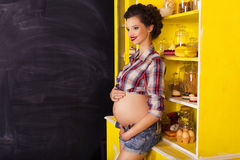 Beautiful brunette woman on a 7th month pregnancy in plaid shirt Royalty Free Stock Image