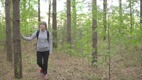 Beautiful brunette woman is walking through the forest.  stock footage