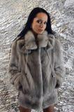 Beautiful brunette woman wearing a fur coat. Stock Photos