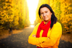 Beautiful brunette in the yellow park scenery. Autumnal portrait of beautiful brunette in the park Royalty Free Stock Image